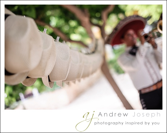 ajphotography_0523